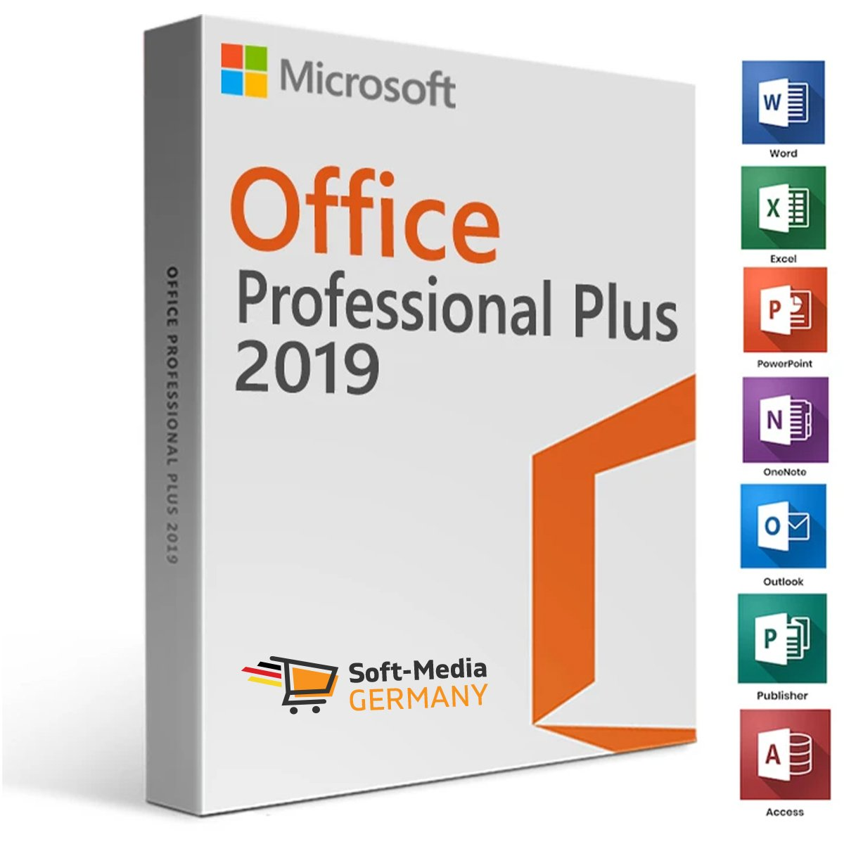 Office Professional Plus 1 PC